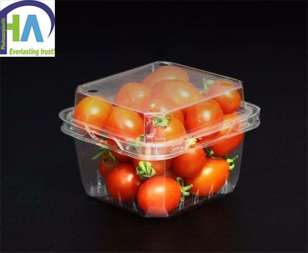Hộp nhựa đựng cà chua bi P250A