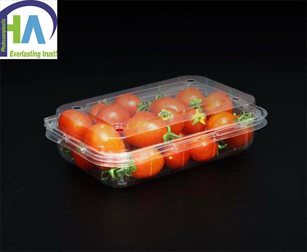 Mua hộp nhựa đựng cà chua bi giá rẻ