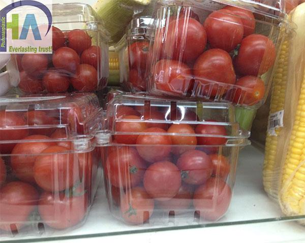 Bán hộp nhựa đựng trái cây giá rẻ
