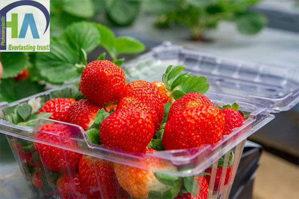 Hộp nhựa đựng dâu giúp bảo quản hàng hóa hiệu quả hơn