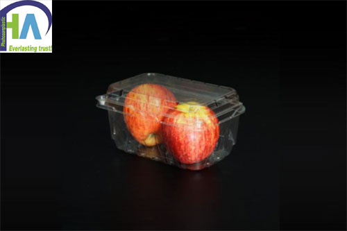 Mua ngay hộp nhựa đựng táo để bảo quản hàng hóa tốt hơn